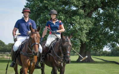 Polo Ponies at Fifield Polo Club, Windsor