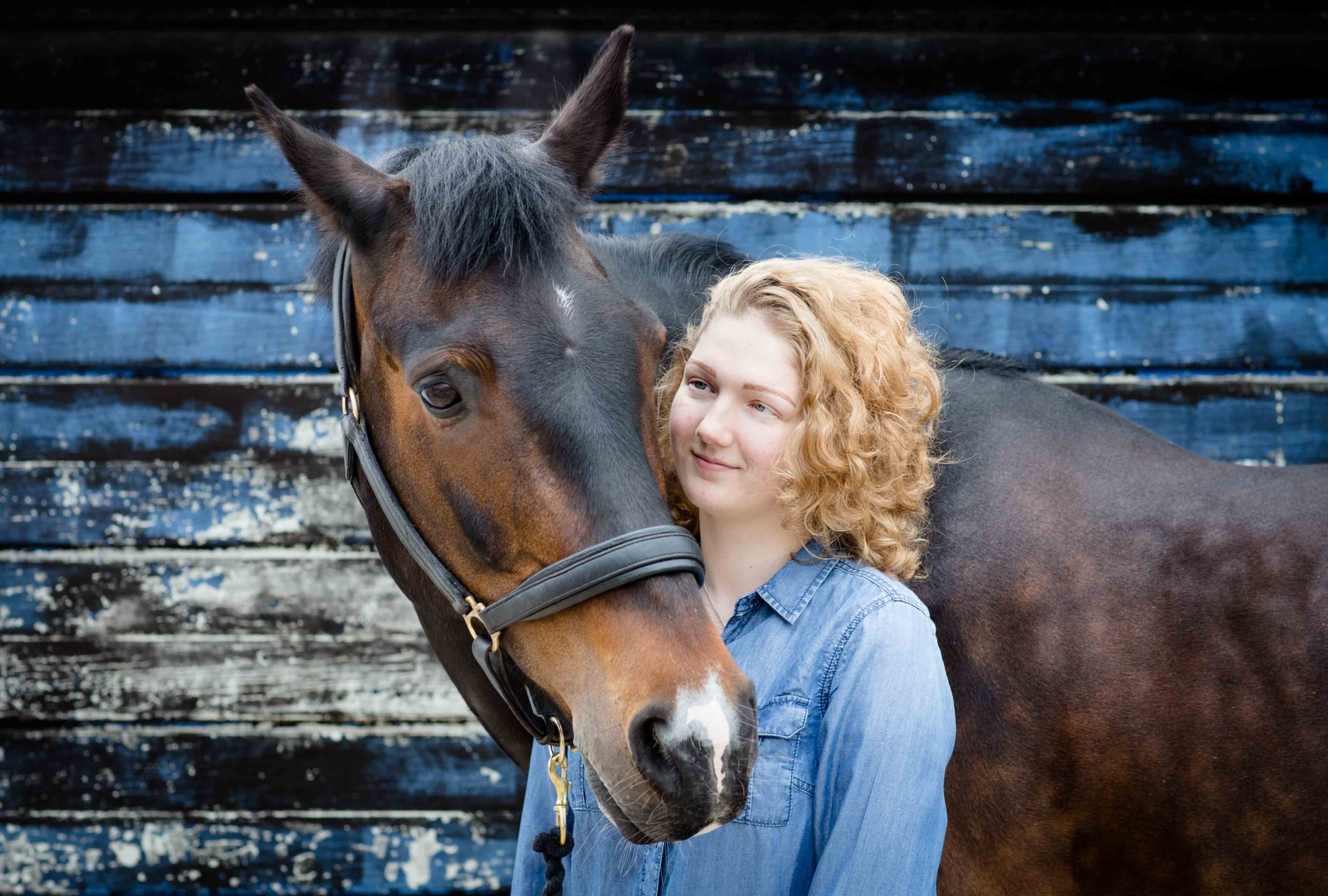Horse Photography, Young women smiling and leaning on head of her horse set against blue board background
